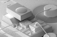 Micromodules / Wafer Level Packaging / MEMS